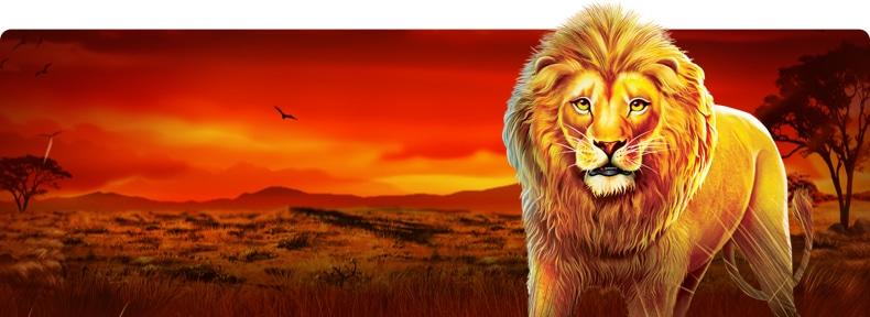 Safari King por Pragmatic Play